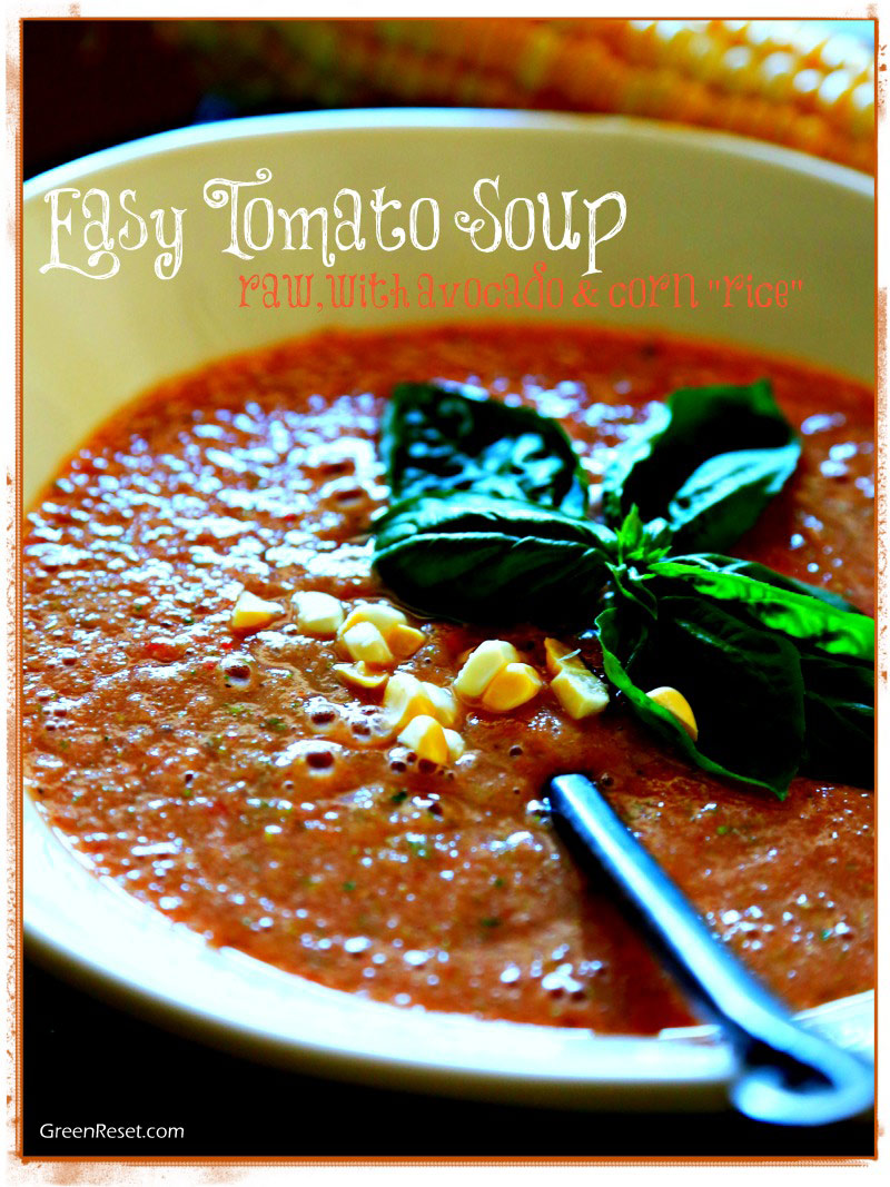 5 Minute Super-Easy Fresh Tomato Basil Soup Recipe