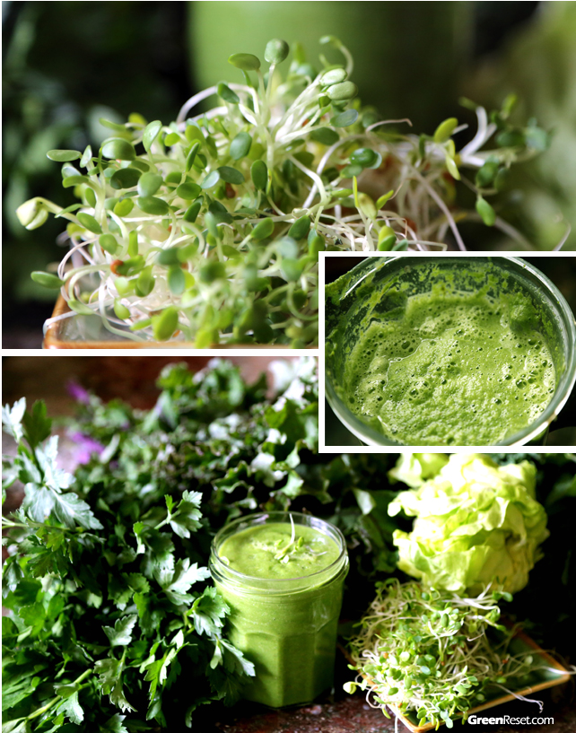 Green Smoothie with Sprouts