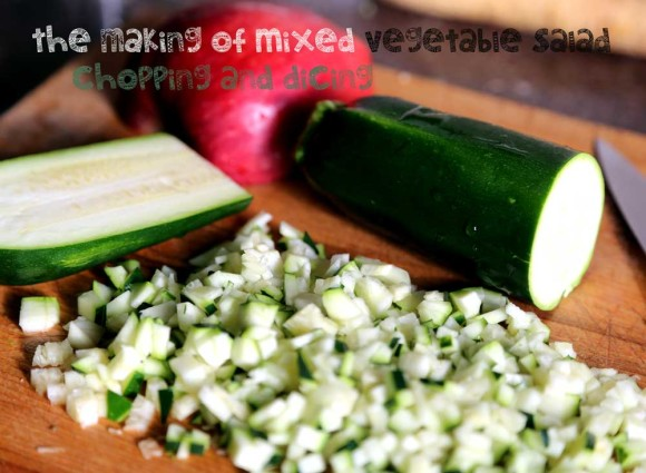 making of  mixed veggie salad