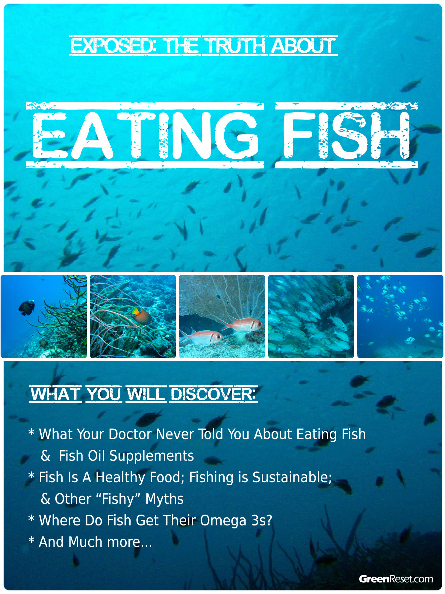 Fish are Friends Not Food Ebook: Omega 3 vs Omega 6
