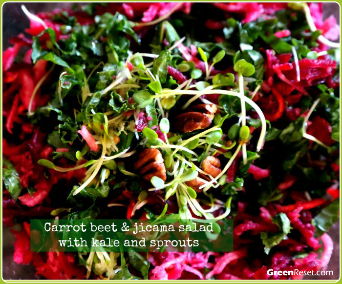 carrot-beet-jicama-with kale and sprouts